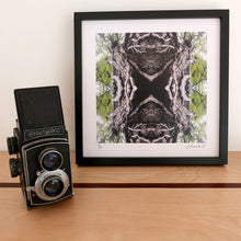Load image into Gallery viewer, Beech Lace, Black Frame