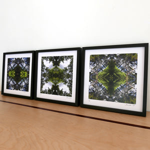 Sounds Native Triptych, Black Frames