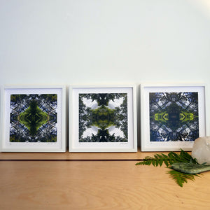 Sounds Native Triptych, White Frames