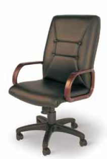 Creative Solutions Furniture Manager Chair - ERC-113