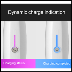 Dynamic Charge Indication