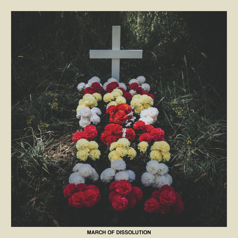 REACTIONS - MARCH OF DISSOLUTION