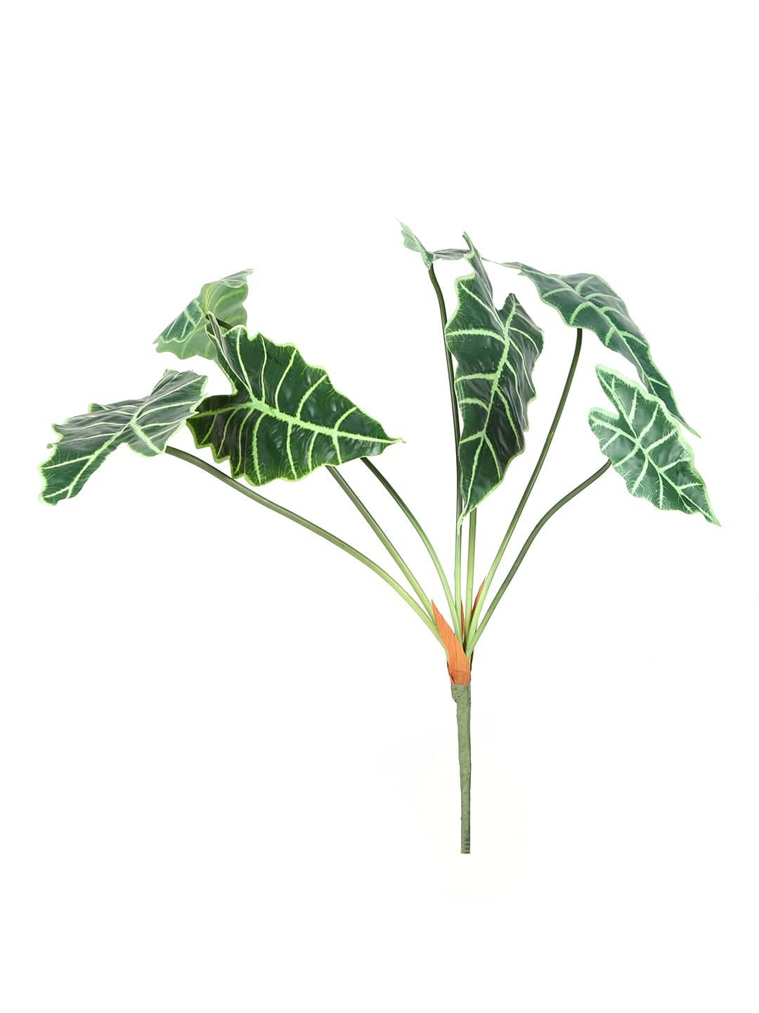 Artificial Zebra Green Plant Without Pot ( L 64 cm  X H 74 cm ) - Artificial Flowers & Plants - PolliNation