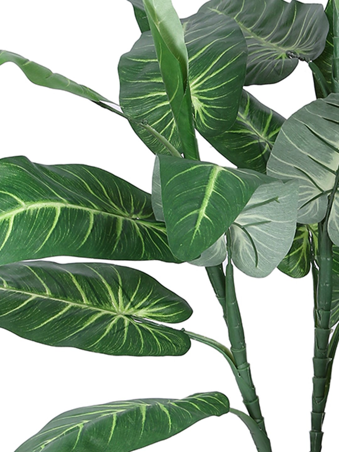 Artificial Elephant Ear Plant Without Pot ( L 65 cm X H 93 cm )