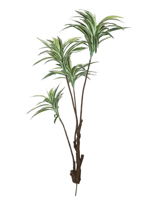 Pollination Decorative White-Green Dracaena Artificial Plant Without Pot for Home Decoration (L 60 cm x H 150 cm) - Artificial Flowers & Plants - PolliNation