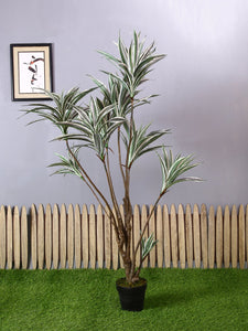 Artificial Draceana Grey Plant With Pot ( L 95 cm X H 153 cm )