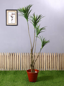 Artificial Yucca Plant Without Pot
