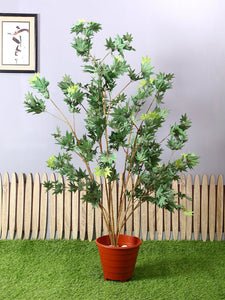Pollination Premium Artificial Green Japanese Maple Plant Without Pot for Home,Office, Restaurant, Hotel, Party, Balcony, Garden Décor, Indoor (L 90 cm x H 150 cm) - Artificial Flowers & Plants - PolliNation