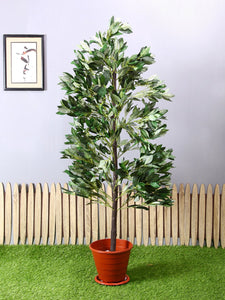 Artificial Green Plant Without Pot ( L 64 cm X H 153 cm ) - Artificial Flowers & Plants - PolliNation