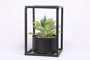 PolliNation Green Mitre Aloe  Artificial Succulent in Black Metal Stand For Home Decor (Pack of 1, 16 cm) - Artificial Flowers & Plants - PolliNation