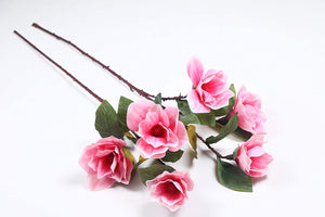 PolliNation Glorious Peach Magnolia Artificial Flowers for Home  (Pack of 1, 39 INCH) - Artificial Flowers & Plants - PolliNation