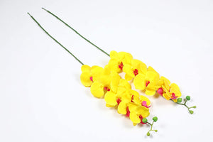 PolliNation Stunning Yellow Phalaenopsis Artificial Orchid Flower for Home Garden Balcony Decoration (Pack of 2, 34 Inch) - Artificial Flowers & Plants - PolliNation