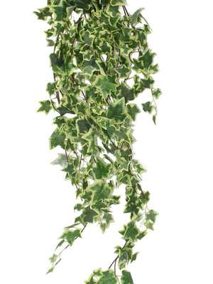Ivy Artificial Creeper plants - Yellow Artificial Plant for Decoration (102 cm, Yellow) - Artificial Flowers & Plants - PolliNation