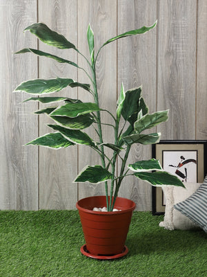 Artificial Hosta Plant Without Pot