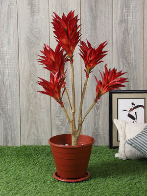 Artificial Draceana Plant Without Pot ( L 56 cm X H 88 cm  )