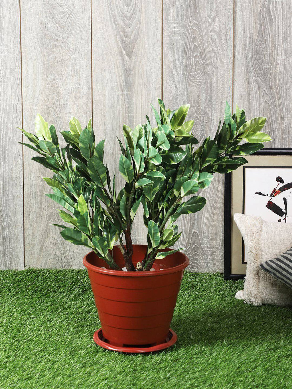 Artificial Qucus Plant Without Pot ( L 60 cm X H 64 cm ) - Artificial Flowers & Plants - PolliNation
