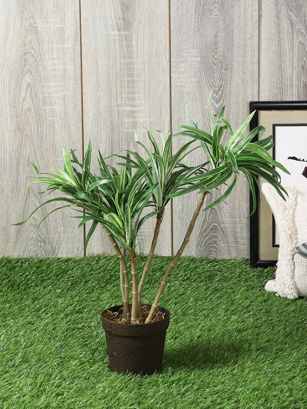 Artificial Dracaena Plant With Pot