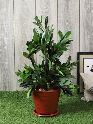 Artificial Green Plant Without Pot