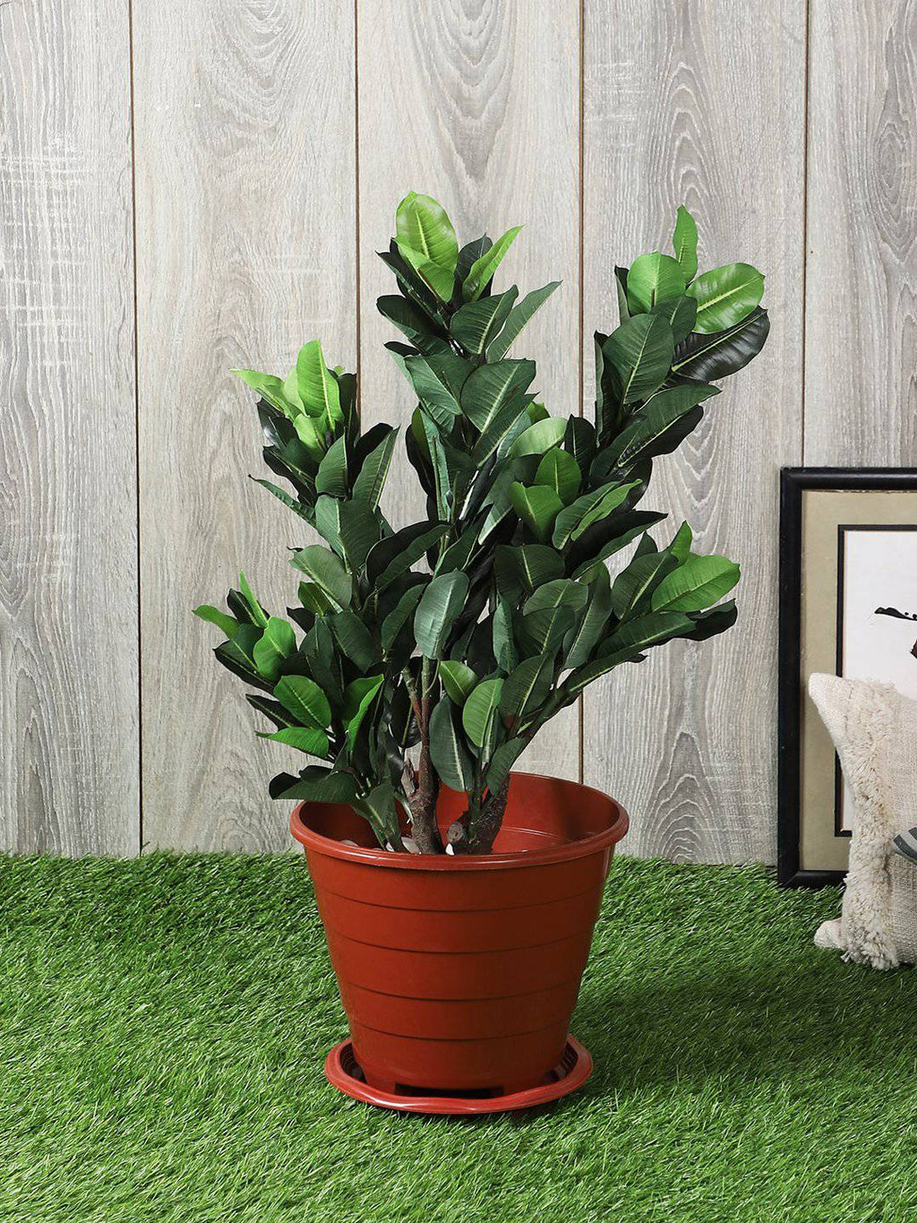Pollination Artificial Quercus Plant Without Pot for Home