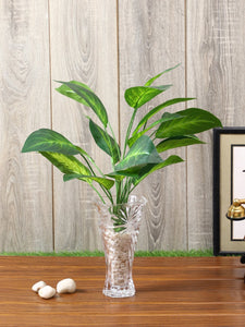 Artificial Diffenbachia Plant Without Pot ( L 70 cm X 63 cm )