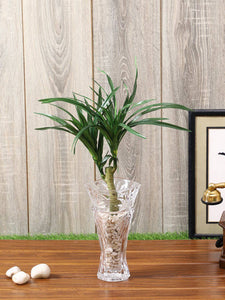 Pollination Decorative Yucca Artificial Plant Without Pot
