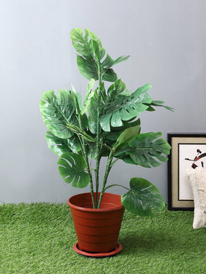 Artificial Split Philo Green Plant Without Pot