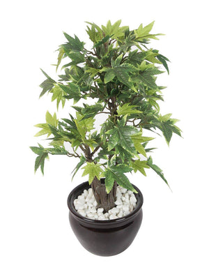 Artificial Multi Maple Bonsai Plant with Ceramic Pot - Artificial Flowers & Plants - PolliNation