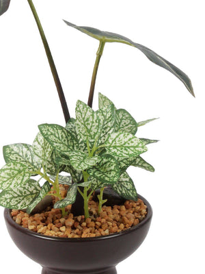 Pollination Artificial Green Zebra Bonsai with Brown Ceramic Pot for Home (Pack of 1, 24 cm) - Artificial Flowers & Plants - PolliNation