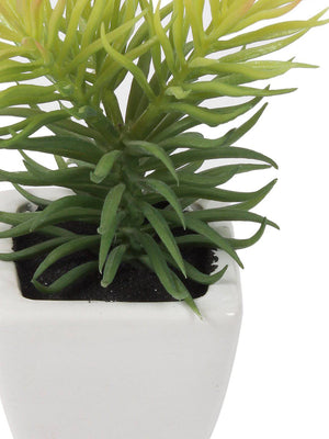 Pollination Artificial Green Succulent in White Ceramic Pot for Gift Home Decor (Pack of 1, 18 cm) - Artificial Flowers & Plants - PolliNation