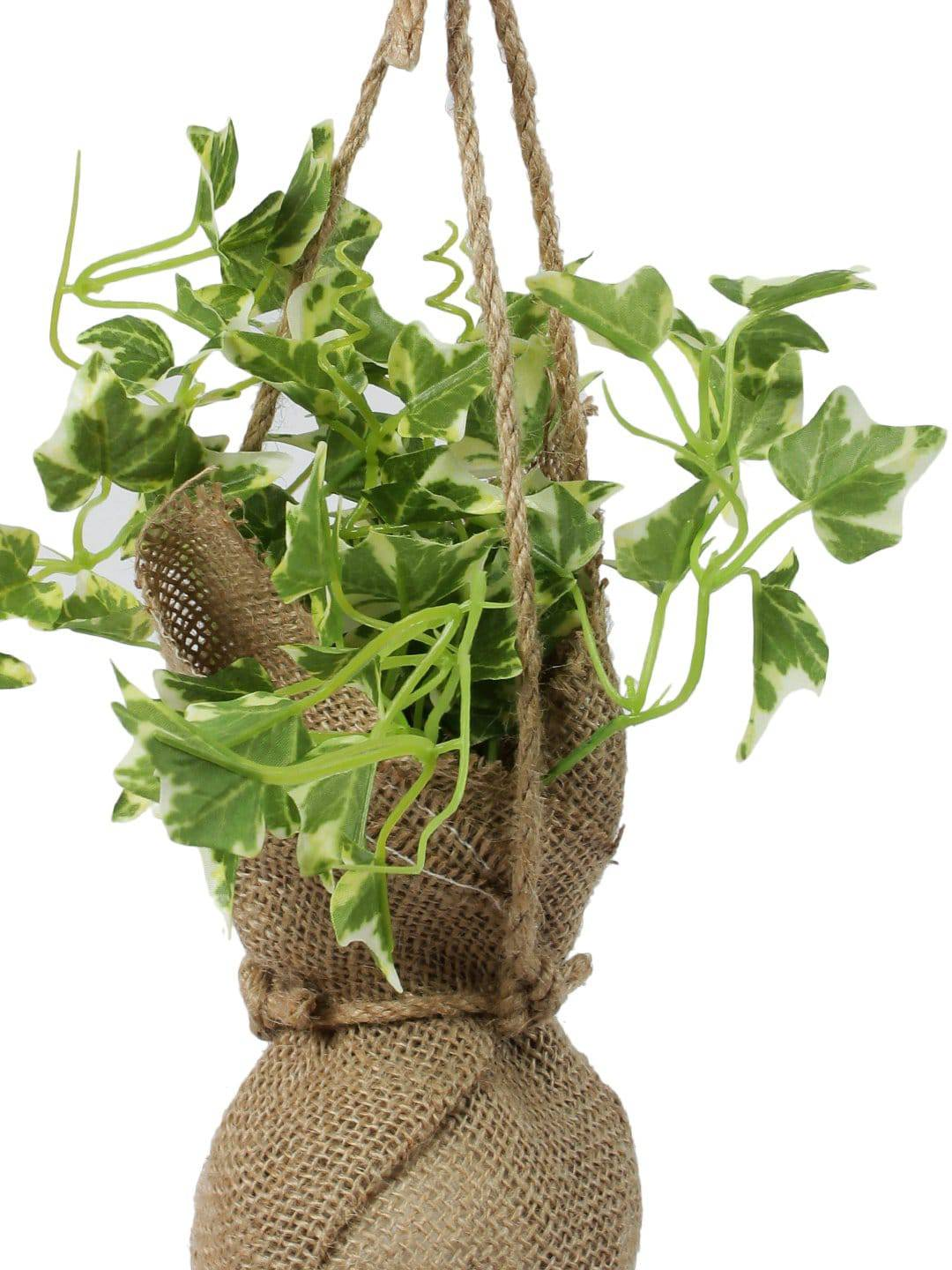 Pollination Beautiful Artificial White Ivy Creeper Bonsai with Jute Bag for Balcony (Pack of 1, 14 Inch) - Artificial Flowers & Plants - PolliNation