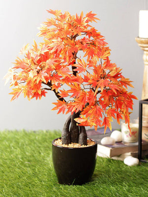 Artificial Maple Plant Bonsai With Ceramic Pot - Artificial Flowers & Plants - PolliNation