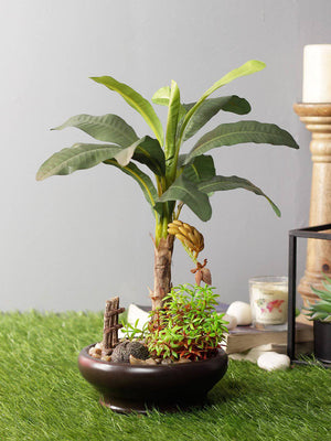 Artificial Banana Plant For Decoration With Ceramic Pot