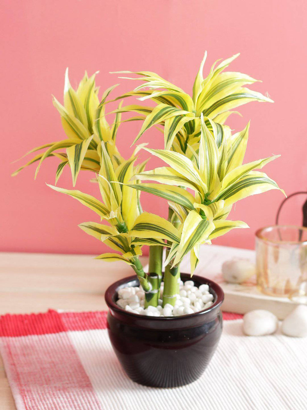 PolliNation Premium White Dracaena Artificial Bonsai Plant with Black Ceramic Pot