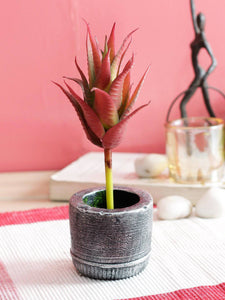 PolliNation Green Artificial Aloe Vera Succulent Without Pot for Home - Artificial Flowers & Plants - PolliNation