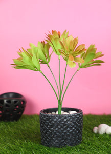 Pollination Brown Artificial Succulent Bunch without Pot for Home,Office, Restaurant, Hotel, Party, Balcony, Garden Decor, Indoor (Pack of 1) - Artificial Flowers & Plants - PolliNation