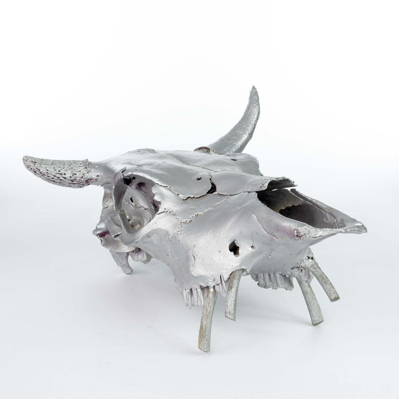 Steer Skull Painted Silver