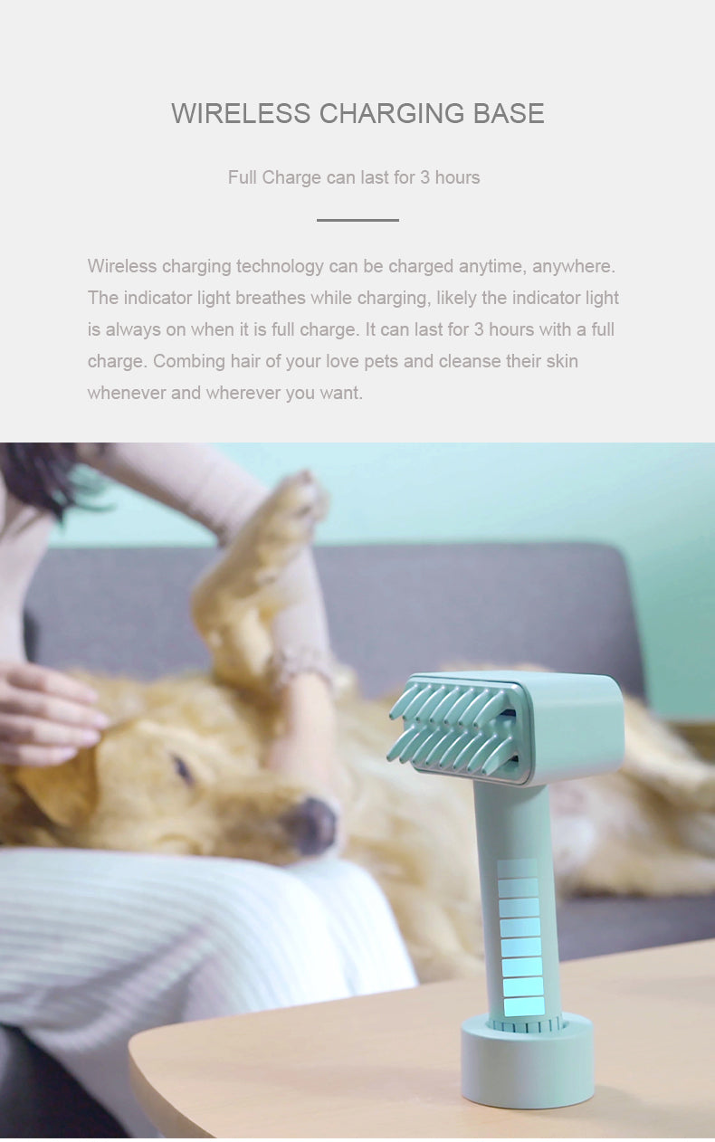 Wireless Electric Comb Brush Pet Hair Remover