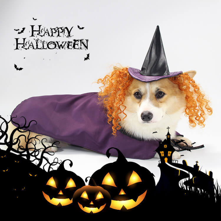 Purple Witch Dog Halloween Costumes Holiday Pet Outfits - Faciipet