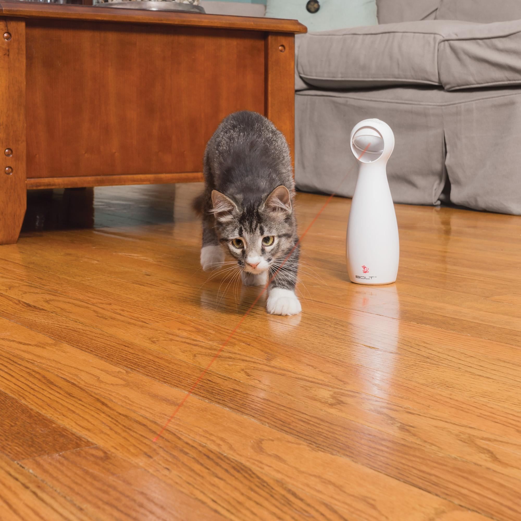 Fibo Automatic Laser Cat Toy - Faciipet