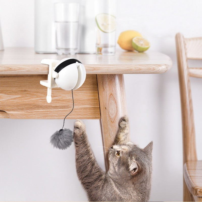 Automatic Electric Interactive Cat Playing Toy For Cat - Faciipet