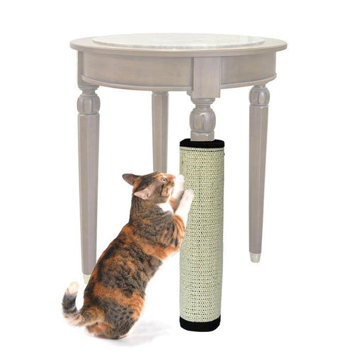 Furniture Protector Scratching Post