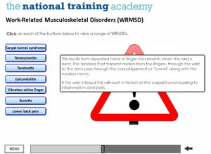 DSE Awareness Online Training - screen shot 4