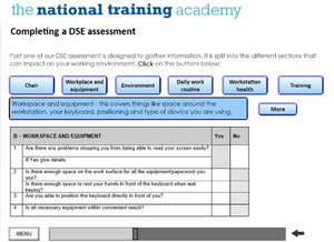 DSE Awareness Online Training - screen shot 5