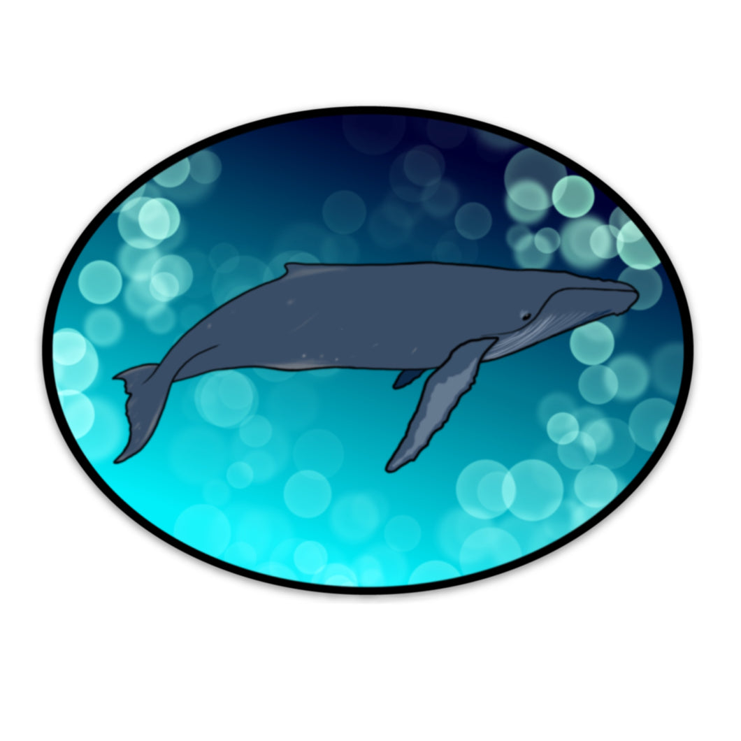 Humpback Whale Oval Sticker (5