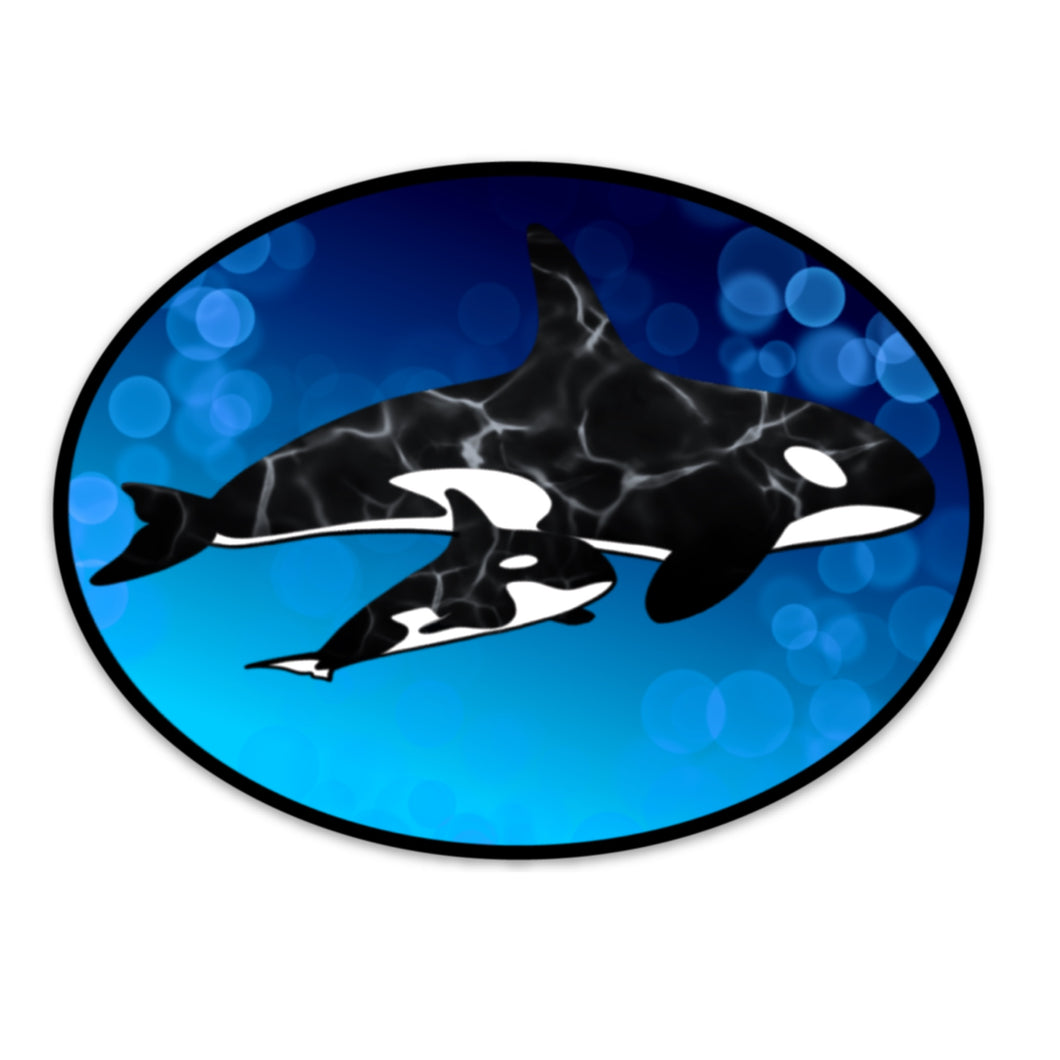Orca Oval Sticker (5