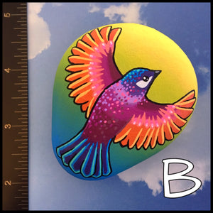Colorful Bird Rocks