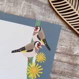 Songbirds Gift Note - Set of 4
