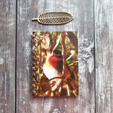 Robin Photographic A6 Notebook