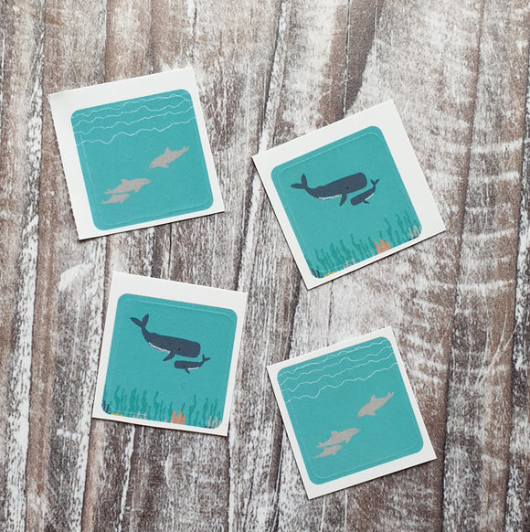 Cetaceans Envelope Sticker Set