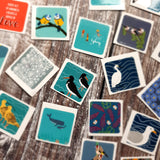 Waterbirds Envelope Sticker Sets